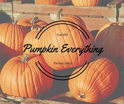"A photo of pumpkins with the text ""Pumpkin Everything."" Learn pumpkin masks and scrubs."